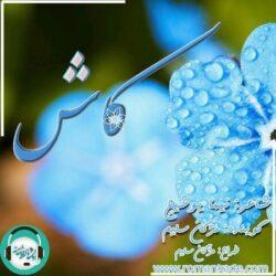 دکلمه صوتی بی نظیر کاش به قلم نیما یوشیج