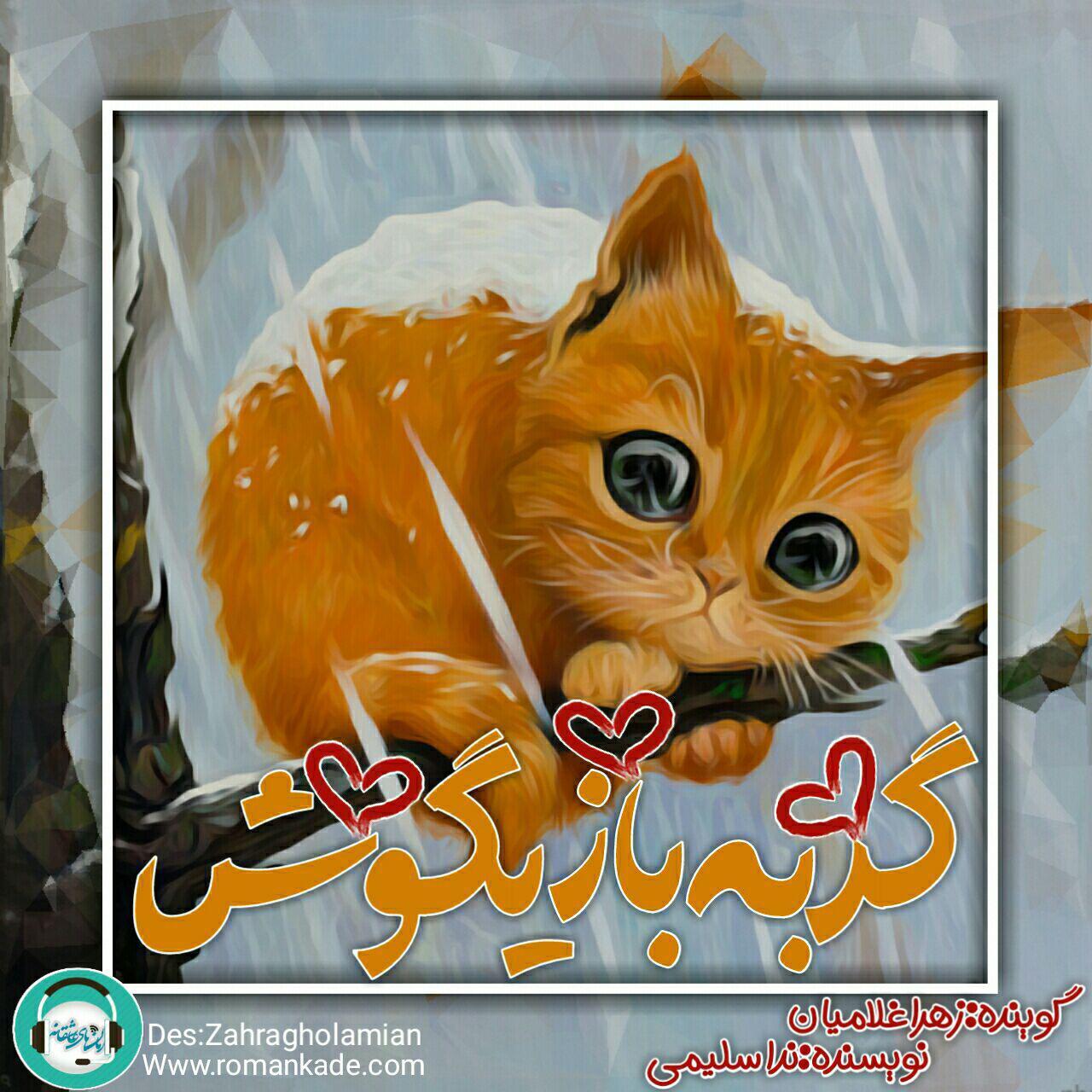 قصه صوتی گربه ی بازیگوش برای کودکان عزیز
