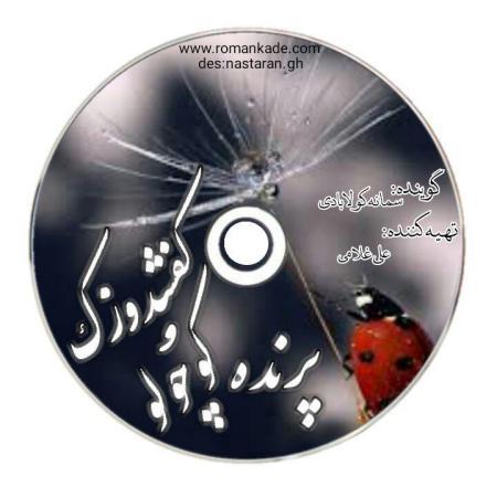 قصه کودکانه پرنده و کفشدوزک