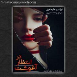 داستان کوتاه در انتطار آغوشت
